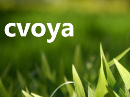 cvoya small